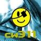 cw311